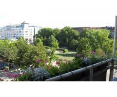 URED za povremeni najam - zakup (PO SATU, DANU), ZAGREB, HRVATSKA, Kvaternikov trg