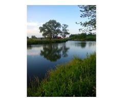 iznajmljujem ribnjak kod Bjelovara