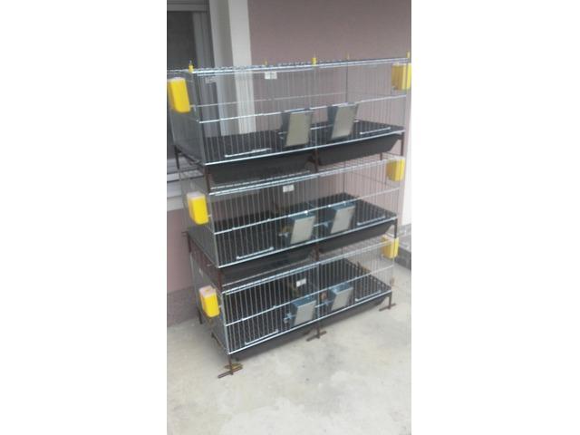Kavezi za pilice i zeceve – Novi Sad, Veternik
